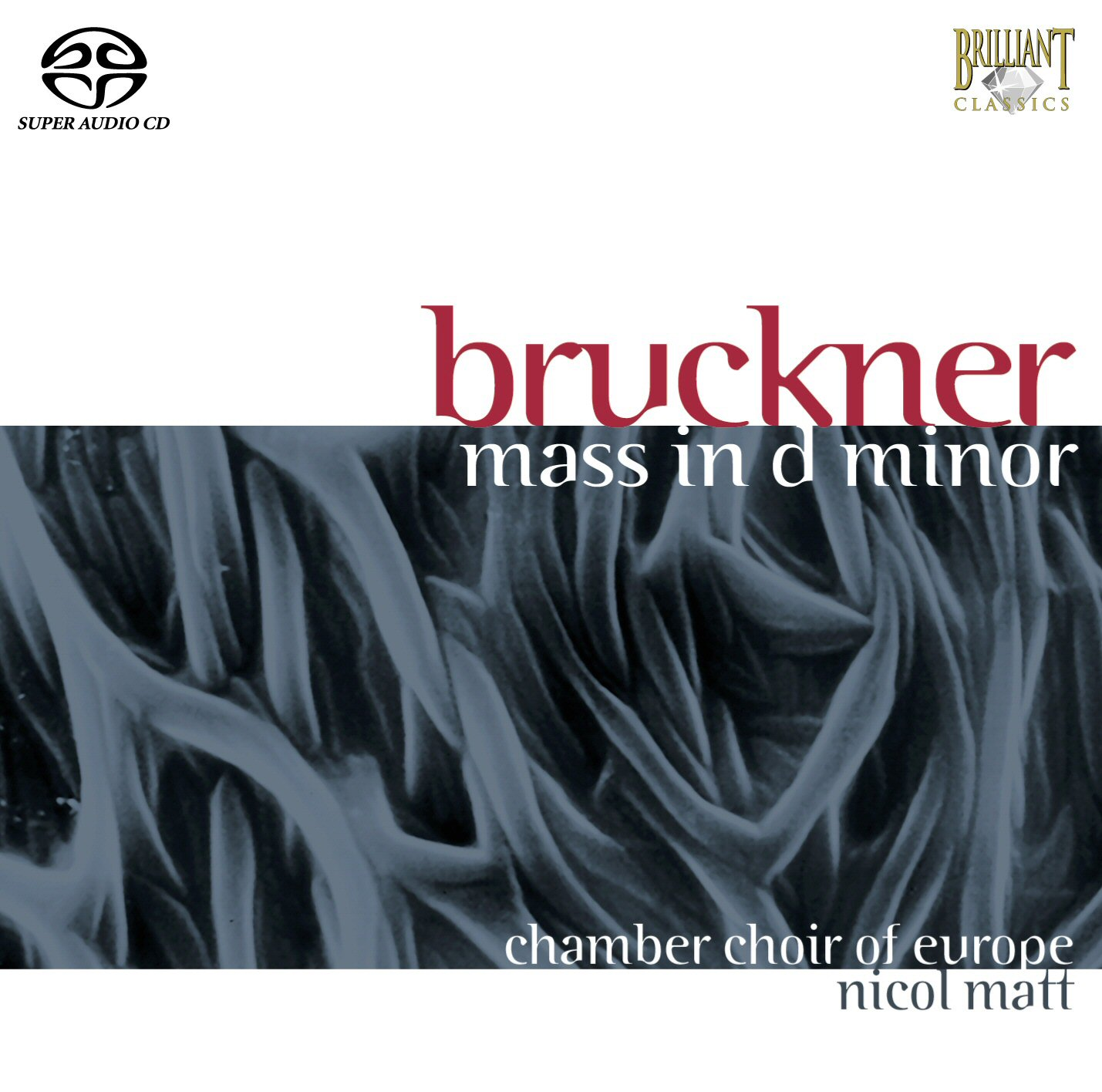 Bruckner Mass in d minor