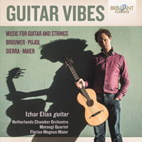 Guitar Vibes: Music for Guitar and Strings